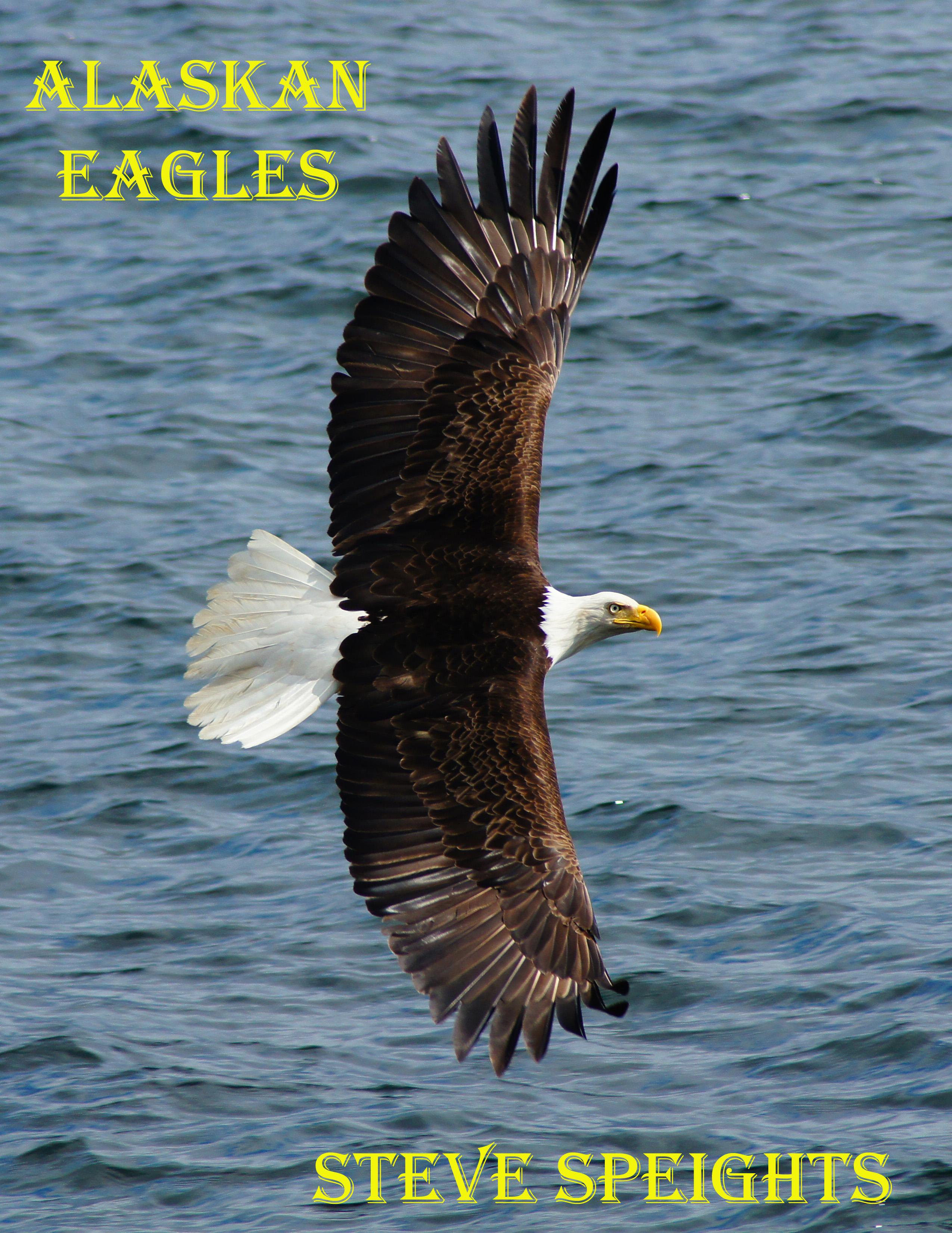 eagle cover